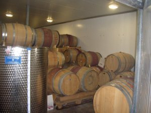 Barrels in Tzuba Winery