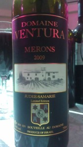 2009 Domaine Ventura Merons