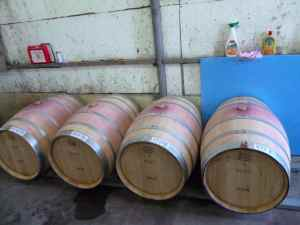 Lewis Pasco's barrels in Beit El Winery-small