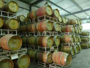 Yatir Winery Barrel Room-small