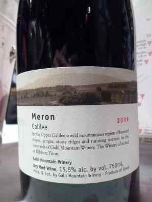 2009 Galil Meron-