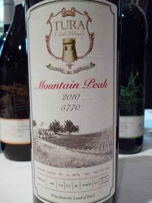 2010 Tura Mountain Peak-