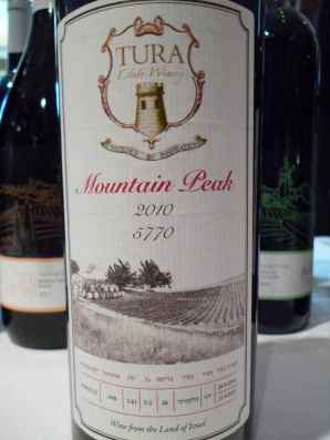 2010 Tura Mountain Peak-