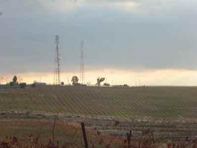 Har Bracha Vineyards 8