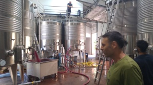 Flam winery's tank room