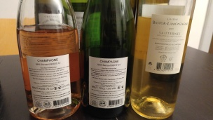 Champagne Bernard Bijotat, Brut, Champagne Bernard Bijotat, Rose Brut, 2009 Chateau Bastor Lamontagne - back labels
