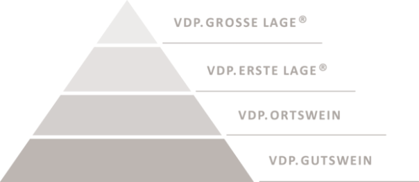 csm_2016_Klassifikationspyramide_alle_Stufen_warmgrey_by_VDP_ff879df51a.png
