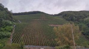 Insane hills of Saar and Mosel 1