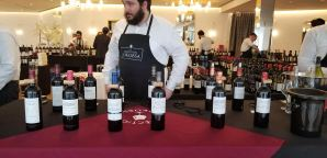 Medoc wines wines at Bokobsa Sieva Tasting Feb 2019