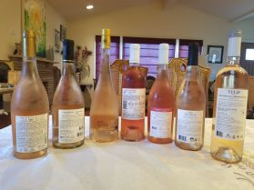 2019 Carmel Rose, Appellation, 2019 Binyamina Rose, Grenache Barbera, Reserve, 2019 Chateau Sainte Marguerite Rose, 2019 Yatir Rose, 2019 1848 Rose, 2nd Generation, 2019 Pacifica Rose, 2019 Tulip White Franc - b